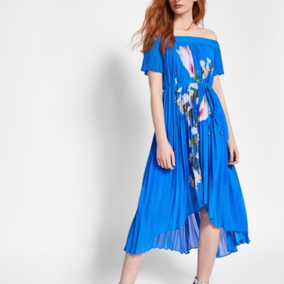 1bdbd11d Ted Baker Dresses | Harmony Blue Floral Pleated Dress | Poshmark